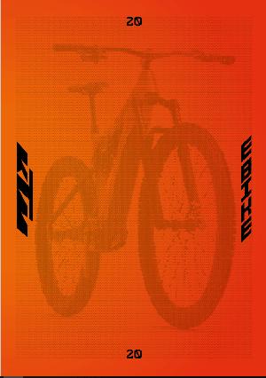 KTM E-Bike 2020